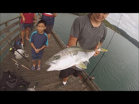 NZ Basic Fishing | Wharf Fishing | The Great 'Pier Pressure'