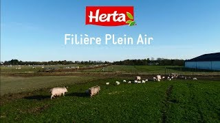 Filière Plein Air Herta®