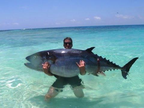 Spearfishing Dogtooth Tuna Hunt - Saint Lazarus Bank Monsters