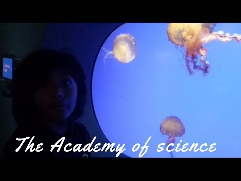 The Academy of Science Part 1