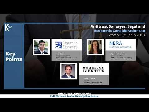Antitrust Damages