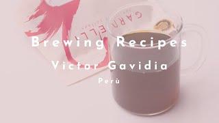 Victor Gavidia (Peru) video