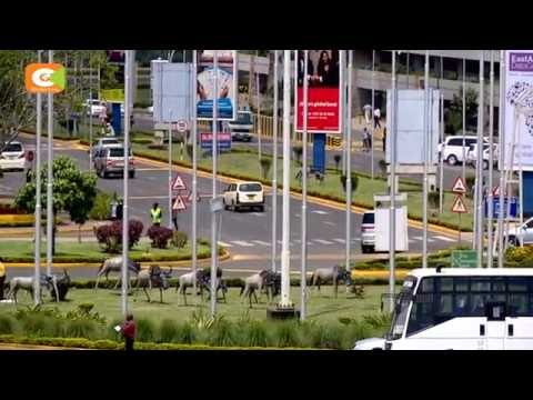 Jomo Kenyatta International Airport registers improved performance