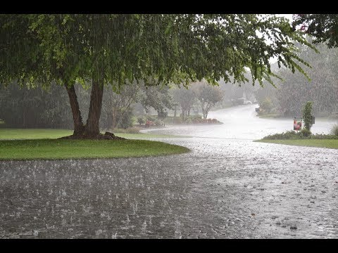 Lahore welcomes another spell of rain