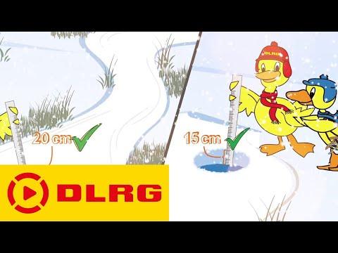 DLRG Eisregeln