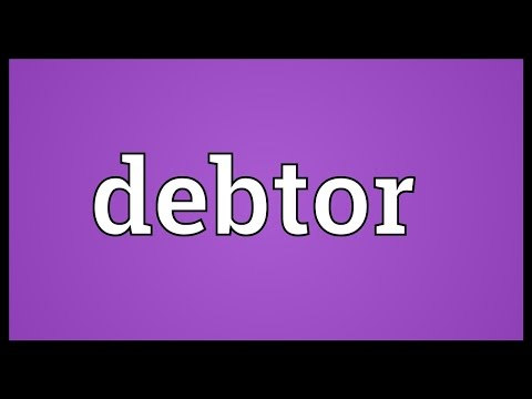 Debtor Meaning