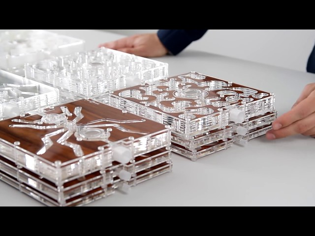 ANTCUBE Acrylglas Plattenformicarien
