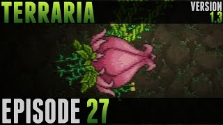 Terraria - #27 - Ankh Shield & Plantera