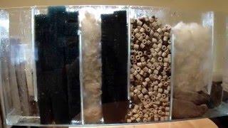 Sump, moja filtracja w 240 litrach. W akwarium słodkowodnym.