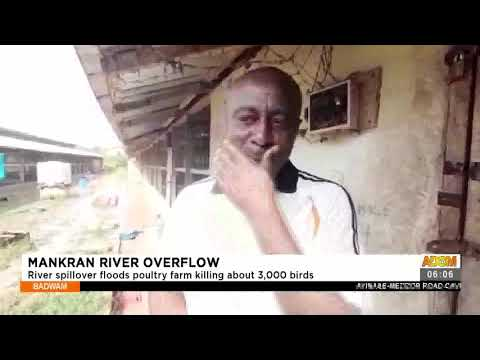 Mankran River Floods: River spillover floods poultry farm killing about 3,000 birds (19-7-21)