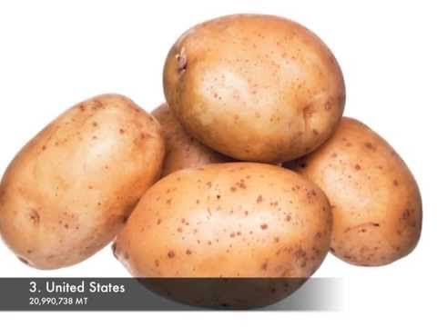 Top 10 potato producing countries