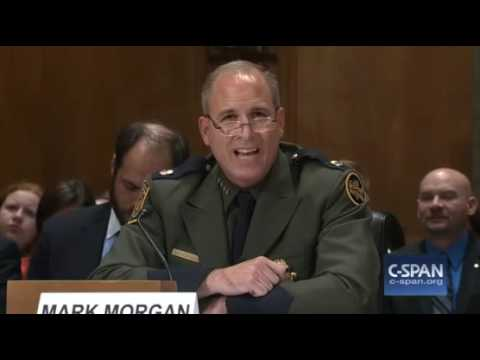 Border Chief: Agents Can't Secure The Border They Are Busy Checking The Temperature Of Burritos
