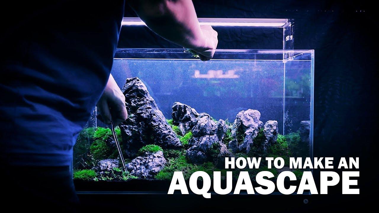How To Make An Aquascape By Green Aqua With Live Aquarium Plants Youtube