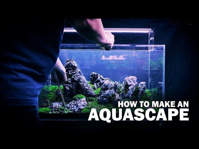 HOW TO MAKE AN AQUASCAPE BY GREEN AQUA - WITH LIVE AQUARIUM PLANTS