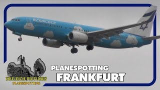 Planespotting Frankfurt Airport | September 2019 | Teil 1