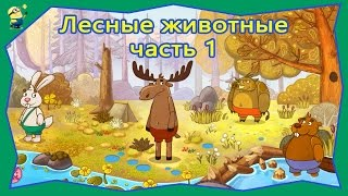 Мультфильм Что едят и где живут Лесные животные часть 1. Мультики для самых маленьких