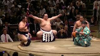 日馬富士断髪式の時の土俵入り.