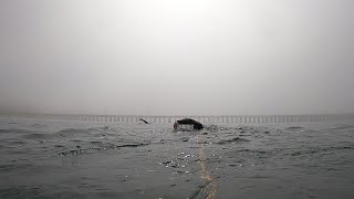 Foggy & Cold Open Water Ocean Swim