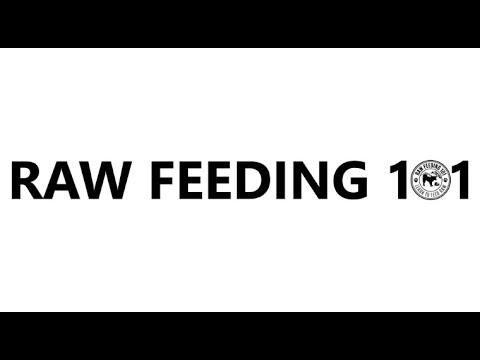 Dog Dad's Raw Feeding Live Stream!