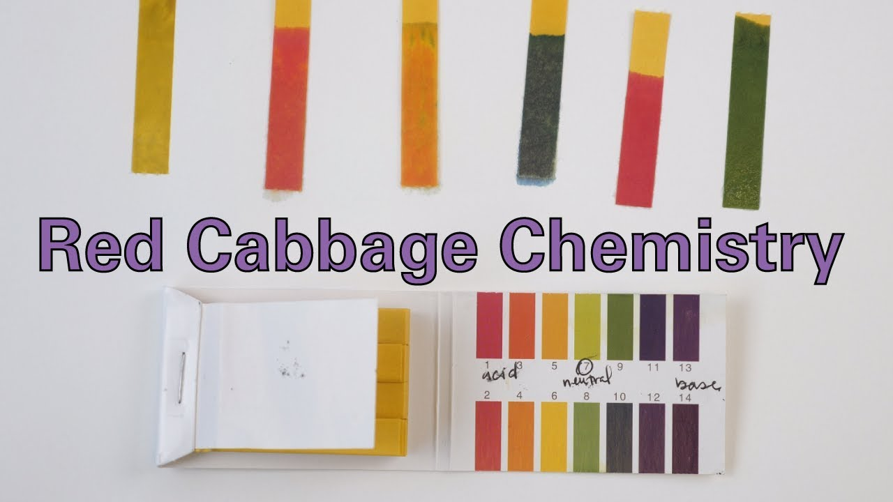 Red Cabbage Chemistry Activity Teachengineering