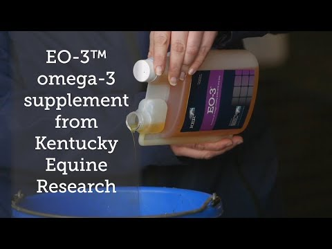 EO-3™ Omega 3 Supplement From Kentucky Equine Research