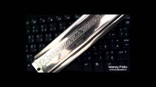 Celin Dion - My heart will go on ( Titanic ) - Harmonica Cover version