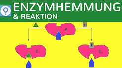 Enzymhemmung & Reaktionsgeschwindigkeit einfach erklärt - Hemmung der Enzymaktivität   Stoffwechsel