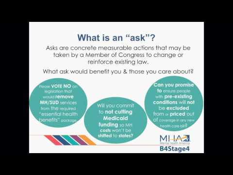 WEBINAR: 2017 MHA Advocacy Overview