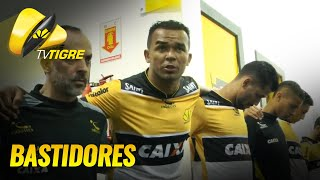 TV Tigre | Bastidores de Criciúma x Goiás - 01/11