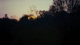 Multi Horror Tribute