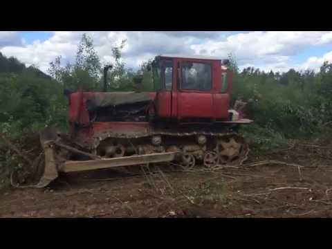 Бульдозер ТД-75 расчищает территорию от мелкого кустарника в Калуге