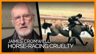 Demolition Derby: PETA's Investigations Expose Horse-Racing Cruelty