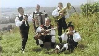 Ansambel bratov Avsenik-Čiribiribela mare moja.wmv