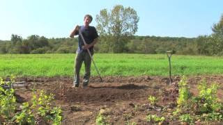 Vegetable Gardening : Growing Organic Vegetables In A Raised Bed Garden