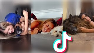 Invading your dogs personal space TikTok Compilation *Wholesome*