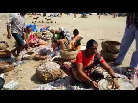 Bargaining For Fresh Fish 3, Bombay Ducks, Prawns And Mandlis