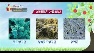 인간의 생존조건, 미생물 - 김응빈 연세대 시스템생물학…