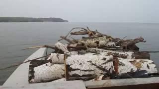 Береза везет дрова(, 2016-07-25T11:05:46.000Z)
