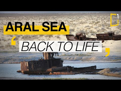 Aral sea | The difficult return of water
