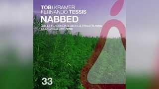 Tobi Kramer & Fernando Tessis - Nabbed (Wolfgang Lohr Remix) 96kbps