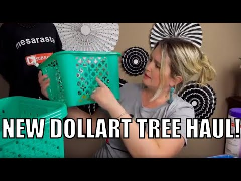 I found Brand New Items at the Dollar Tree Haul!