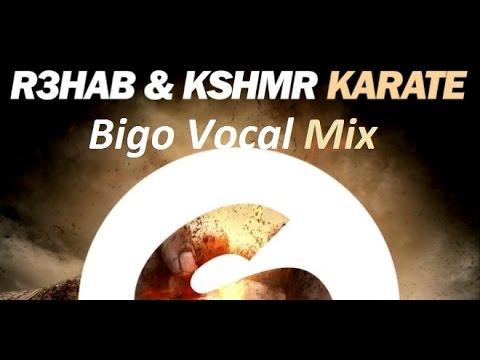 R3hab Vs Calvin Harris - Need Your Karate (Bigo Vocal Mix)
