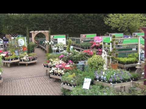 Wyevale Stockton Garden Centre May 2016