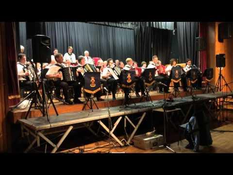 Milltown Accordion Band @ Gospel Concert 2016 (5)