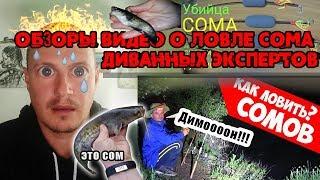 Рыбалка на сома диванных экспертов Виталий Дальке обз с ирает на стриме