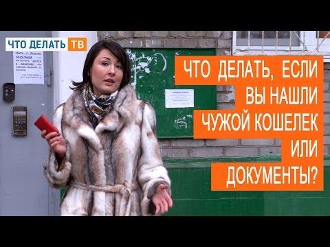 Вопрос: Что делать, если нашёл детёныша нерпы (Петербург) Куда обращаться?