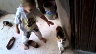 طفل بيلعب مع قطه | Boy plays with a cat Thumbnail