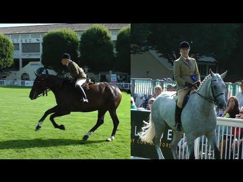 Dublin Horse Show Small Hunter Championship RDS 2017