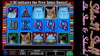Kitty Glitter Live Slot Play - Just for fun!