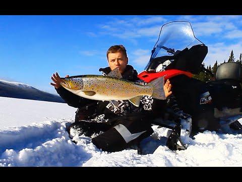 Трофейная рыбалка в Северной Карелии и Мурманской области